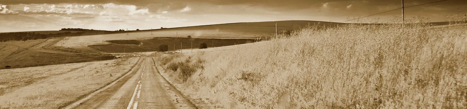Monarch-Banner-Weg